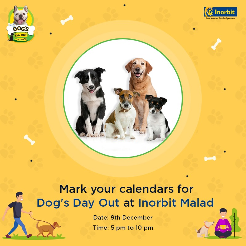 Dogs Day Out at Orbit Mall Malad